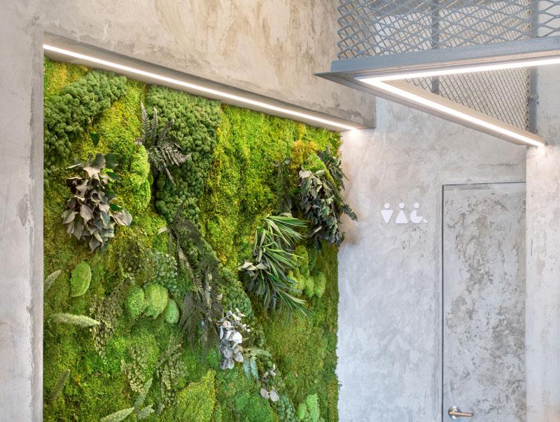 Современный дизайн интерьера кафе-парка